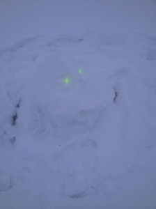 One lonely snowghost.